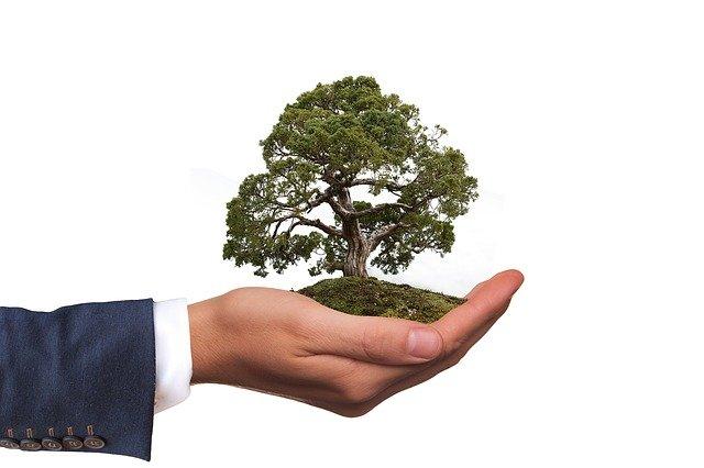 mudanza ecologica